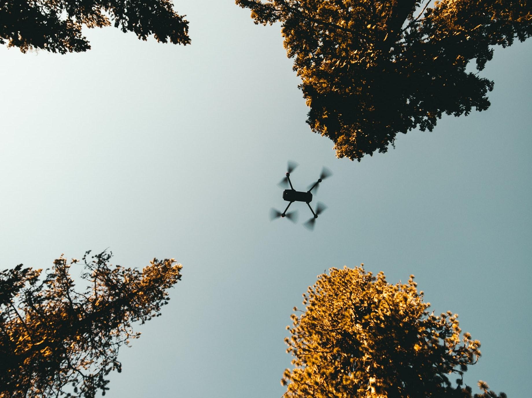 drón az égben